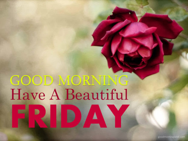 Best Good Morning Friday Have A Beautiful 2017 Good Morning Images