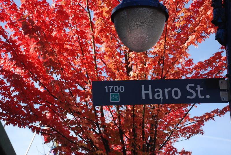 Haro St, Fall Colours