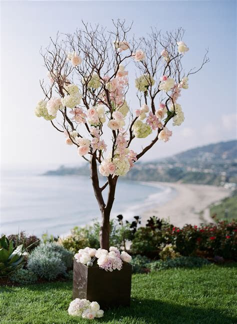 Tree Branches With Roses Ceremony Decor   Elizabeth Anne