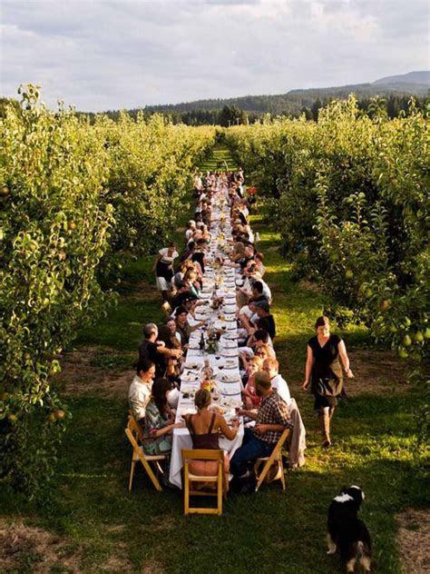 32 Vineyard Wedding Reception Décor Ideas   Weddingomania
