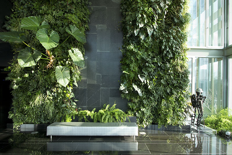 Products | Wallemi Vertical Gardens Canada
