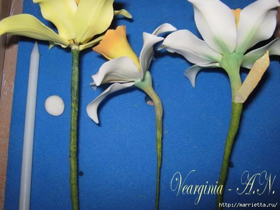 Лепка нарциссов из сахарной мастики и холодного фарфора (17) (577x433, 118Kb)