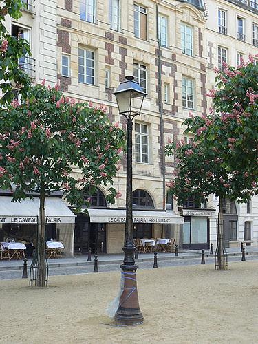 place dauphine 3.jpg