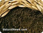 http://www.naturalnews.com/gallery/photoscom/soil.jpg