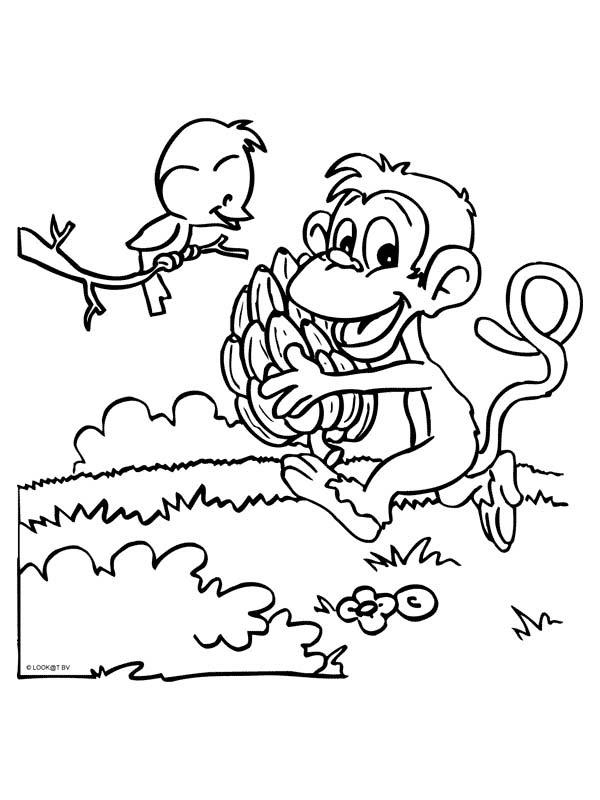 Scimmie Disegni Per Bambini Da Colorare