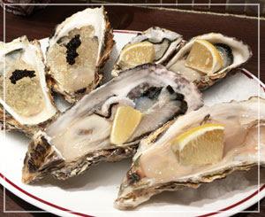 どーんと、生牡蠣プレート。大ぶりの牡蠣と小ぶりのと、種類が違うのがやってきました。