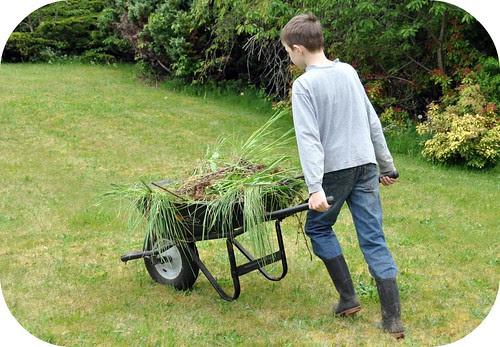 Getting garden ready