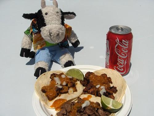 Tacos for lunch! NOM NOM NOM
