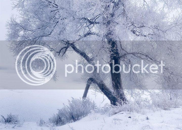 photo Vladimir-Kirillov-5_zps2624535a.jpg