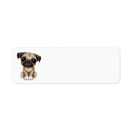 Cute Baby Pug Puppy Dog Return Address Labels