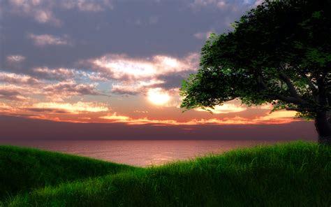 hilltop sunset wallpapers hilltop sunset stock