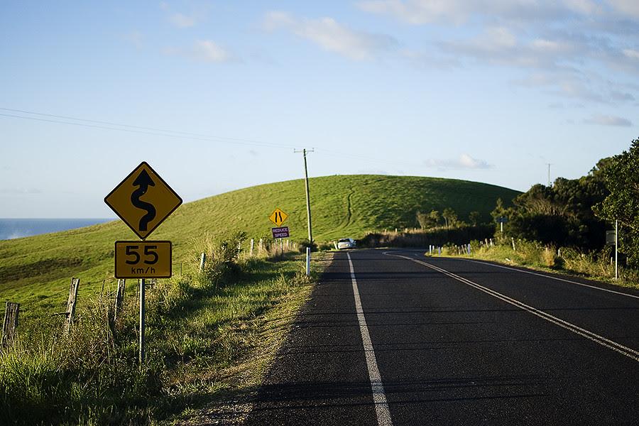 tristy hill