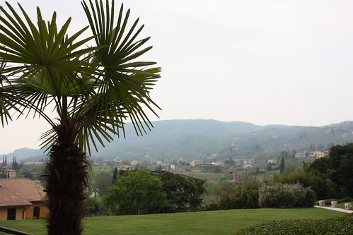 View from Poiano