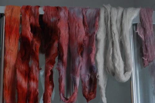 Hand dyed combed top - angora merino, superwash merino, and Shetland