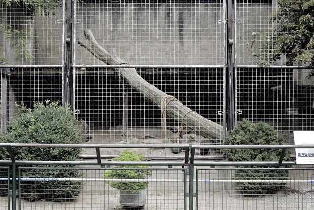 Jaguar Enclosure