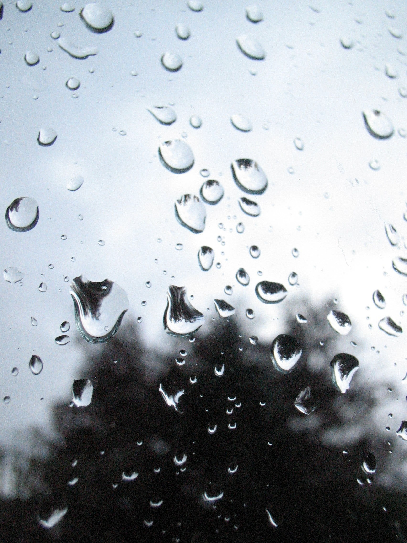 Rain Glass Drop And Water Hd Wallpaper And Background