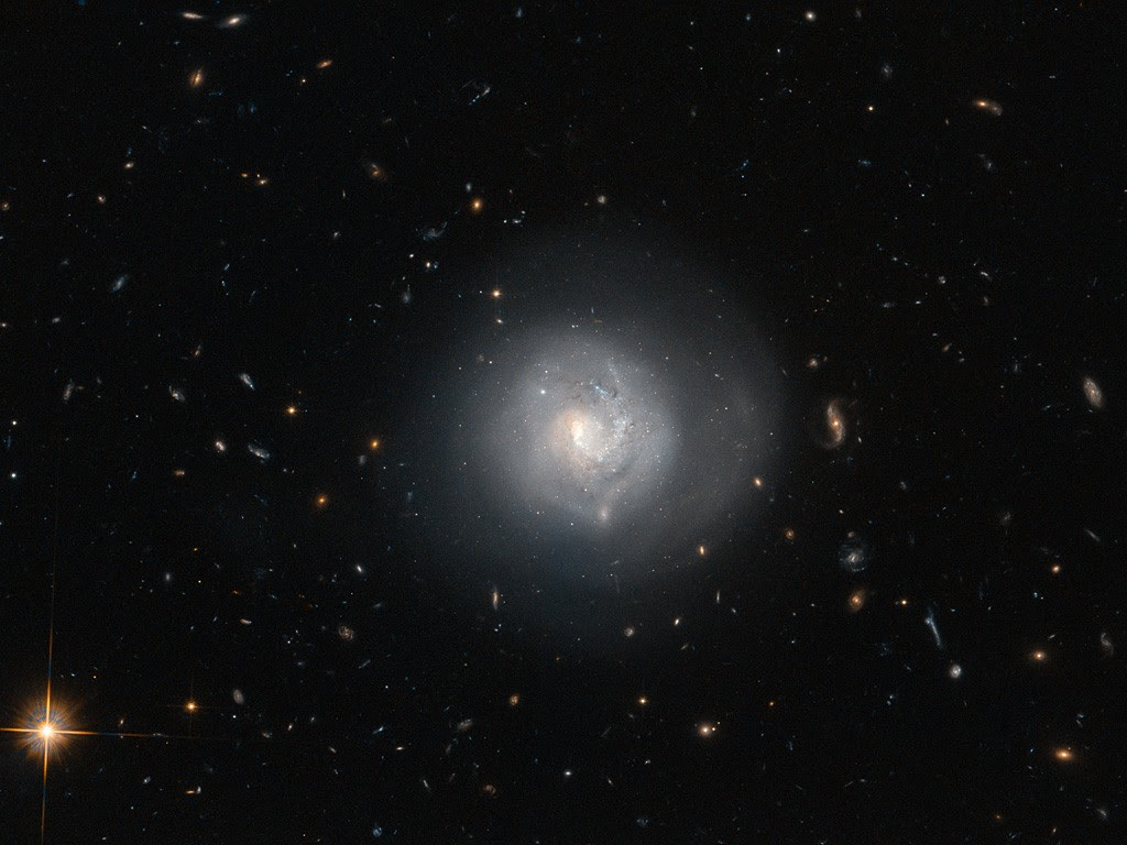 This galaxy is known as Mrk 820 and is classified as a lenticular galaxy — type S0 on the Hubble Tuning Fork. The Hubble Tuning Fork is used to classify galaxies according to their morphology. Elliptical galaxies look like smooth blobs in the sky and lie on the handle of the fork. They are arranged along the handle based on how elliptical they are, with the more spherical galaxies furthest from the tines of the fork, and the more egg-shaped ones closest to the end of the handle where it divides. The two prongs of the tuning fork represent types of unbarred and barred spiral galaxies. Lenticular galaxies like Mrk 820 are in the transition zone between ellipticals and spirals and lie right where the fork divides. A closer look at the appearance of Mrk 820 reveals hints of a spiral structure embedded in a circular halo of stars. Surrounding Mrk 820 in this image is good sampling of other galaxy types, covering almost every type found on the Hubble Tuning Fork, both elliptical and spiral. Most of the smears and specks are distant galaxies, but the prominent bright object at the bottom is a foreground star called TYC 4386-787-1. A version of this image was entered into the Hubble's Hidden Treasures image processing competition by contestant Judy Schmidt.
