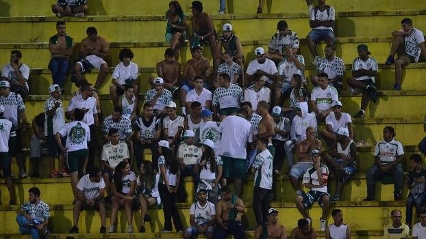 Palmeiras torcida