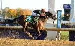 Musical Romance wins the 2011 Breeders' Cup Filly and Mare Sprint