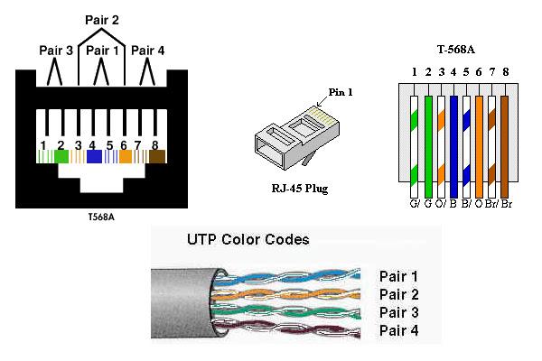 wiring diagram: cat 5 plug wiring diagram cat5 female wiring diagram  wiring diagram