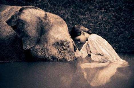 Risultati immagini per compassione