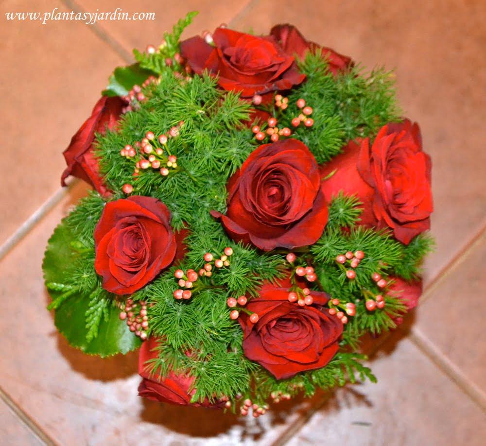 Las Rosas Significado Del Color Plantas Y Jardín