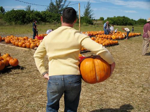 Pumpkin Butt(s)