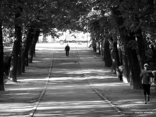 paseo bajo la sombra