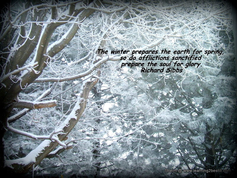 Cold Weather Quotes For Facebook Traffic Club