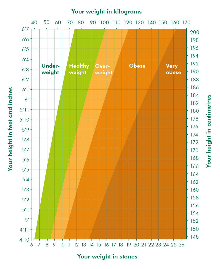 body fat percentage chart by age and height
