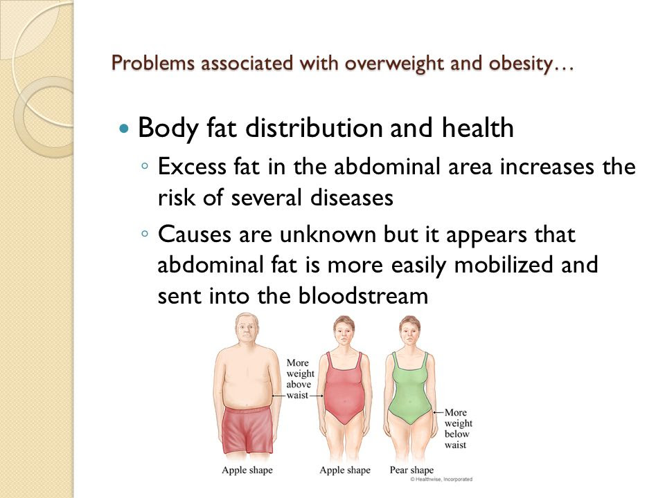Image result for overweight problems