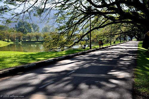 Taiping Lake Garden #1 by sathyan.ram.