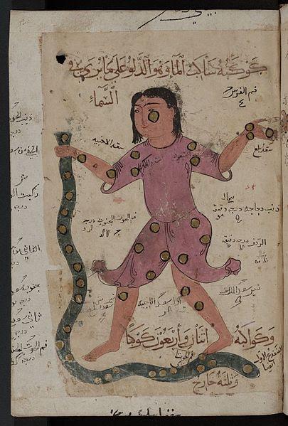 human holding snake