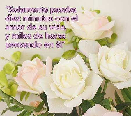 Rosas Blancas Con Frases De Amor Rosas De Amor