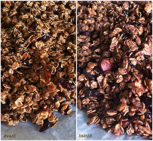 Chocolate granola2