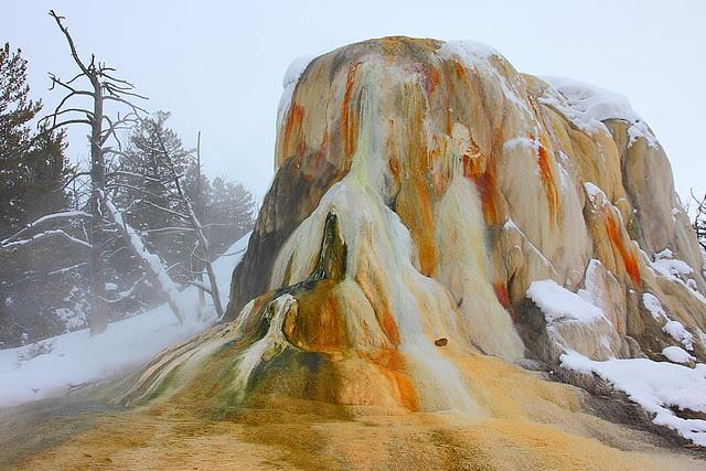 IMG_5630 Orange Spring Mound
