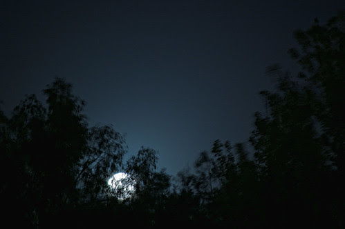 04 28 10_nightshooting_3269