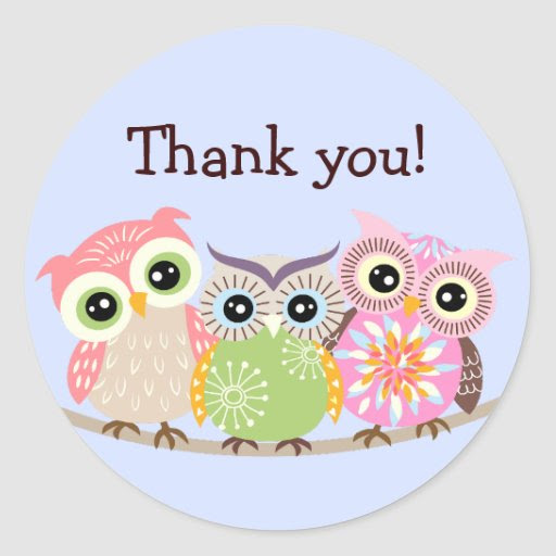 3_cute_and_colorful_owls_thank_you_stickers r483aef636d2443b899a00a9d1b082176_v9waf_8byvr_512