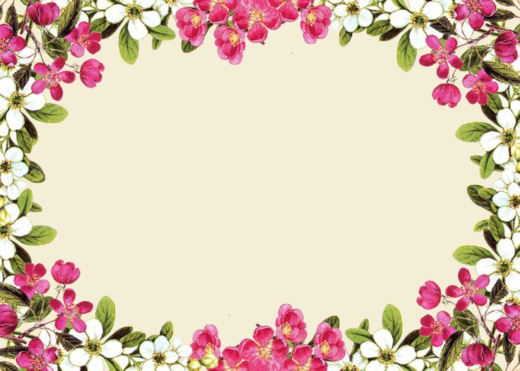 Free Free Printable Floral Borders And Frames Download Free Clip