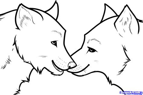 draw wolf love wolf love step  step forest