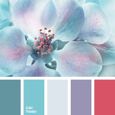 soft violet   Color Palette Ideas