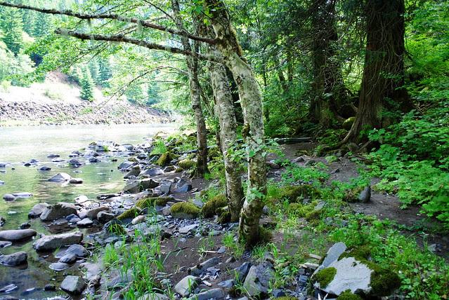 "a second hidden ""beach"" on Clackamas River Trail"