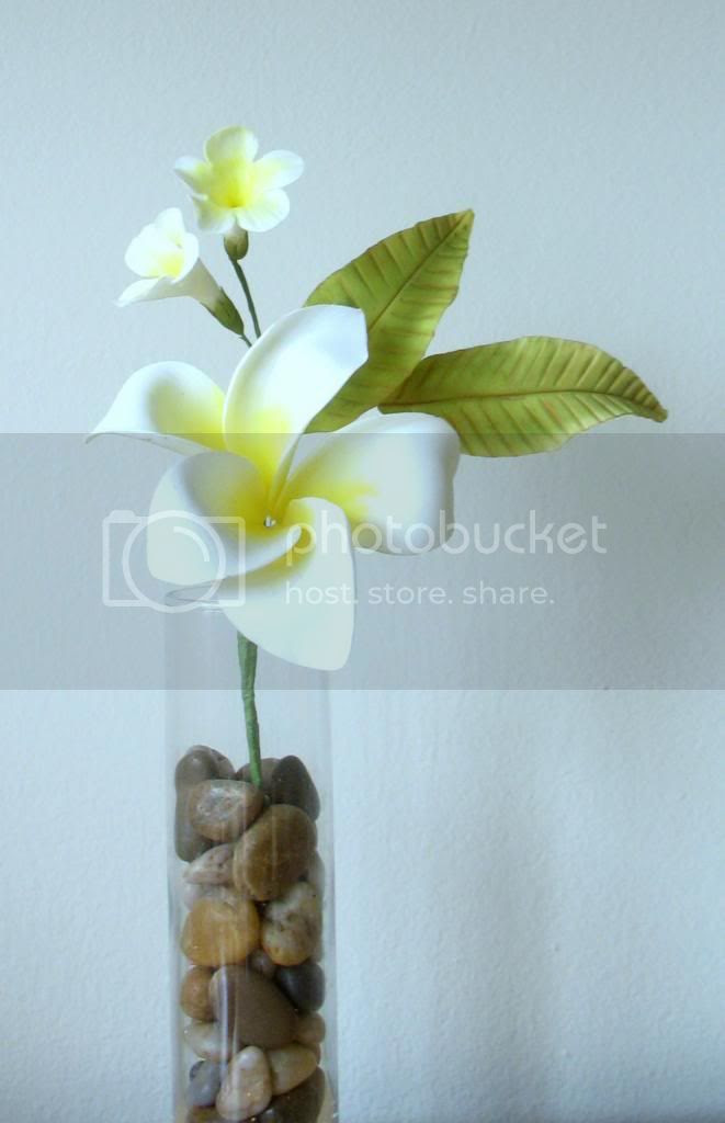 Plumeria and Bower of Beauty
