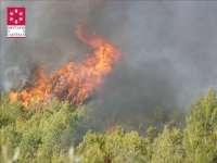 El incendio de Azuébar podría haberse originado por una negligencia
