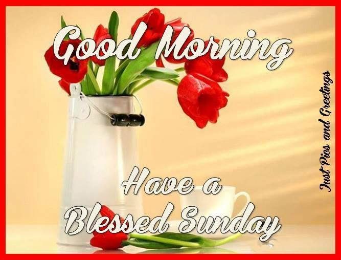 Good Morning And Have A Blessed Sunday Pictures Photos And Images