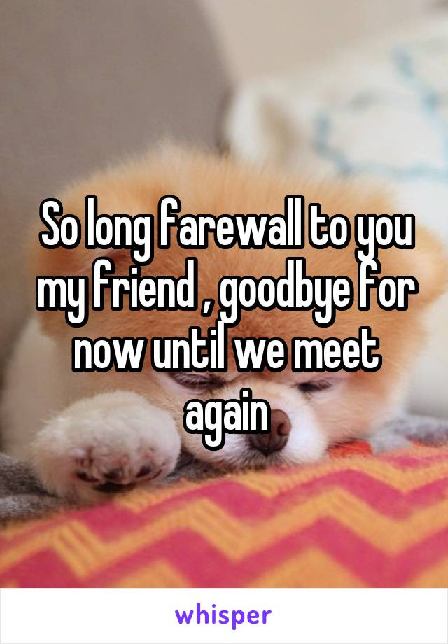 So Long Farewall To You My Friend Goodbye For Now Until We Meet Again