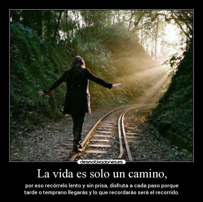La vida es solo un camino, - por eso recórrelo lento y sin prisa, disfruta a cada paso porque tarde o temprano llegarás y lo que recordarás será el recorrido.