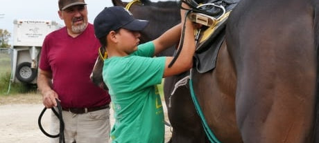 'Our people are horse people': First Nations trainers on track for success at Assiniboia Downs
