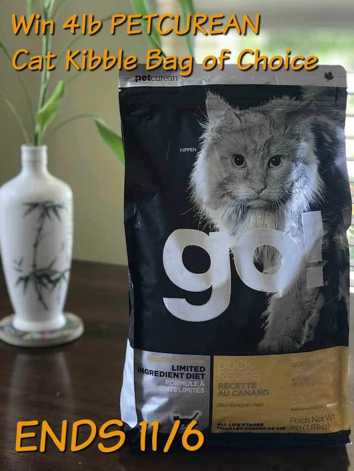 Petcurian Cat Food, Pets Dietary Needs