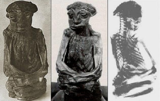 The_San_Pedro_Mountain_Mummy